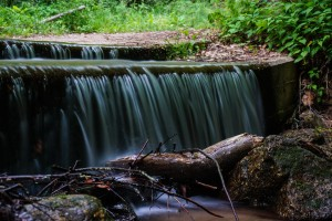 Pisgah National Forest: Shope Creek Area