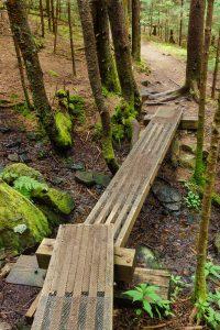 Bridge on Appalachian Trail