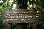 Trip Report: Upper Pilot Rock and Laurel Mountain Loop