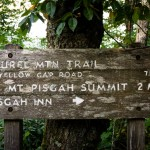 Laurel Mountain Directional Sign