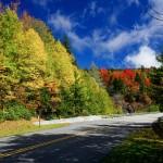 Fall Color at Stack Rock Creek Bridge