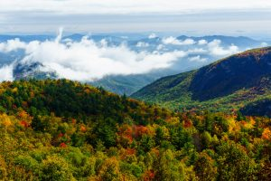 Fall Color in Lost Cove
