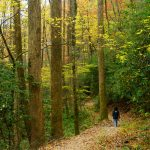 Hiking the Black Mountain Trail in Fall