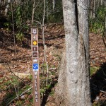 Mullinax Trail Sign