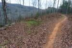 Trip Report: Lower Trace Ridge Reroute