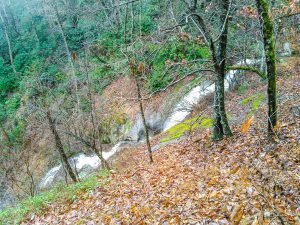 Toms Creek Falls from the Upper Path