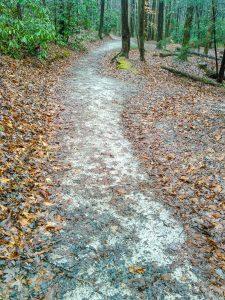 Newly Graded Trail at Toms Creek Falls