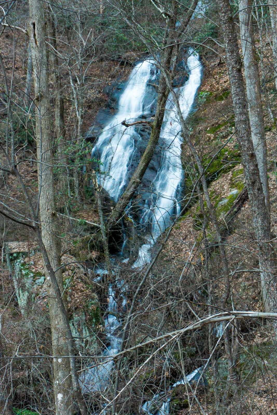 Waterfall on Tributary of Looking Glass Creek