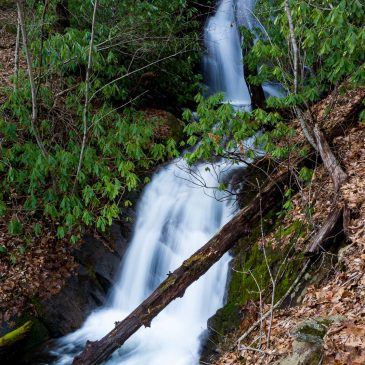 Trip Report: Pisgah Water Everywhere, and Much of it Falling