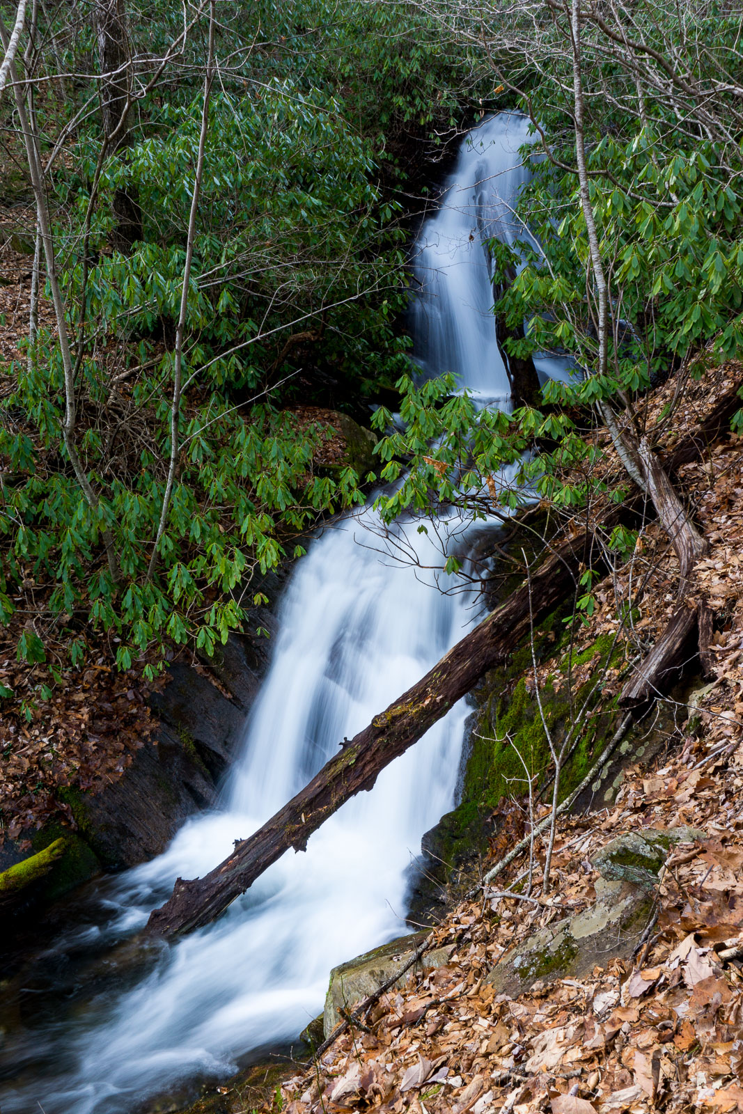 Lower Section of Waterfall on Tributary of Thompson Creek