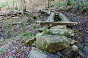 Log Bridges on the High Falls Trail