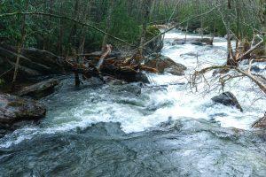 River Below High Falls