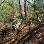 Appalchian Trail on Lover's Leap Ridge