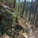 Rock Beside Appalachian Trail