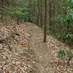 Shope Creek Trail