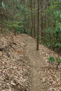 Shope Creek Trail