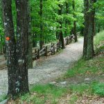 Stone Mountain Loop Trail Switchbacks