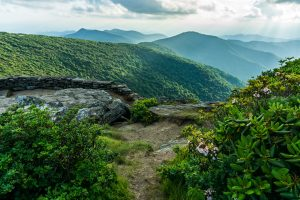 Blue Ridge Parkway: Craggy Gardens Area