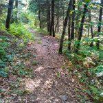 Snowball Trail on Snowball Mountain