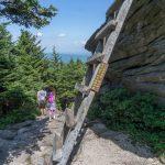 Ladder to MacRae Peak