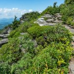 Grandfather Trail on MacRae Peak