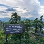 Sign and Dwarf Trees on Grandfather Mountain