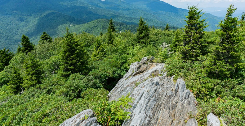 View from Blue Ridge Pinnacle