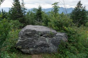 Boulder Beside the Trail