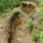 Extreme Erosion in Graveyard Fields