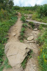Erosion and Bypass on the Art Loeb Trail