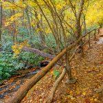 Cascades Trail Fence
