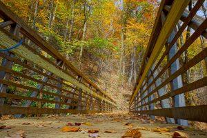 Chestnut Branch Bridge in Fall Color