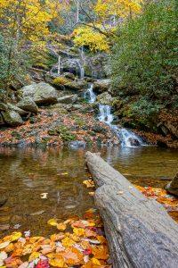 Lower Catawba Falls in Fall Color