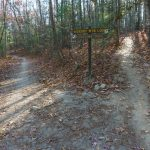 Hickory Mountain Loop and Ridgeline Trails