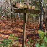 Poplar Loop and White Pine Loop Trail Sign