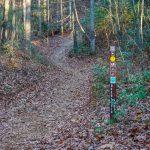 Deerfield Loop