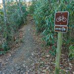 Bikes on Homestead