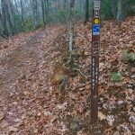Chestnut Cove Trail Sign
