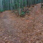 Explorer Loop Trail Junction