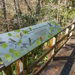 Andy Cove Nature Trail Bird Sign