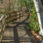 Andy Cove Nature Trail Boardwalk