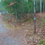 Exercise Trail