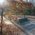 Sit and Relax on the Exercise Trail