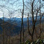 Sycamore Cove Trail Wintertime Views