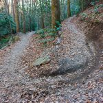 Sycamore Cove Trail Switchback