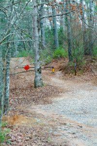 Start of the Trace Ridge Trail