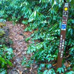 Bridges Camp Gap Trail Sign