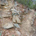 Rock Steps and Switchback on the Lower Piney Trail