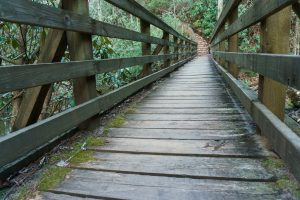 Bridge over Jacob Fork