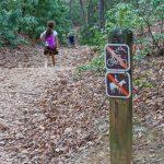 High Shoals Falls Loop Begins Downhill